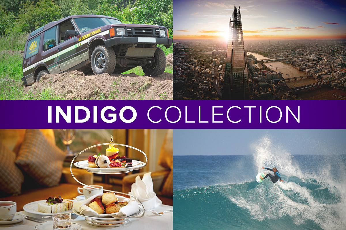 The Indigo Collection