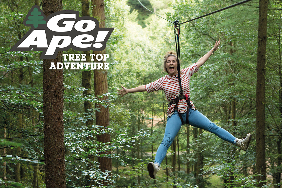 Tree Top Adventure For One With Go Ape Lastminute Com