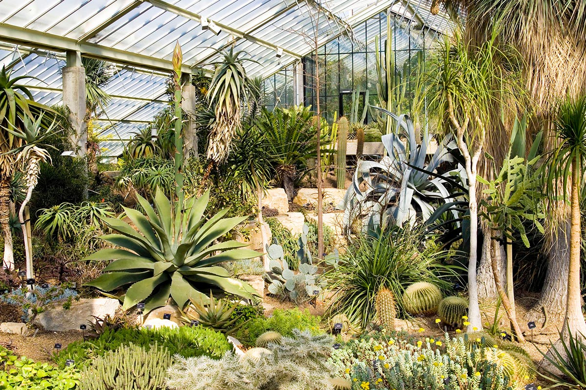 Visit To Kew Gardens And Palace With Tea Cake For Two Lastminute