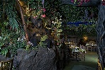 Adventurer Three Course Dining Experience with a Drink for Two at Rainforest Café