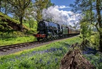 Family Steam Train Trip with Churnet Valley Railway