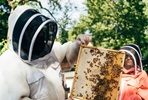 London Beekeeping and Craft Beer Tasting