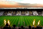 Premier Stadium Tour And lunch Experience At Newcastle UTD F.C
