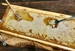 The Ultimate Honey Experience for Two