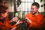 Theatrical Cocktail Masterclass Behind Bars for Two at Alcotraz, The Prison Cocktail Bar