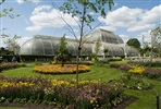 Visit to Kew Gardens and Palace with Tea and Cake for Two